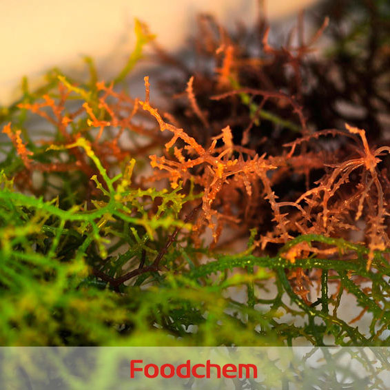 Carrageenan Foodgel1100 suppliers