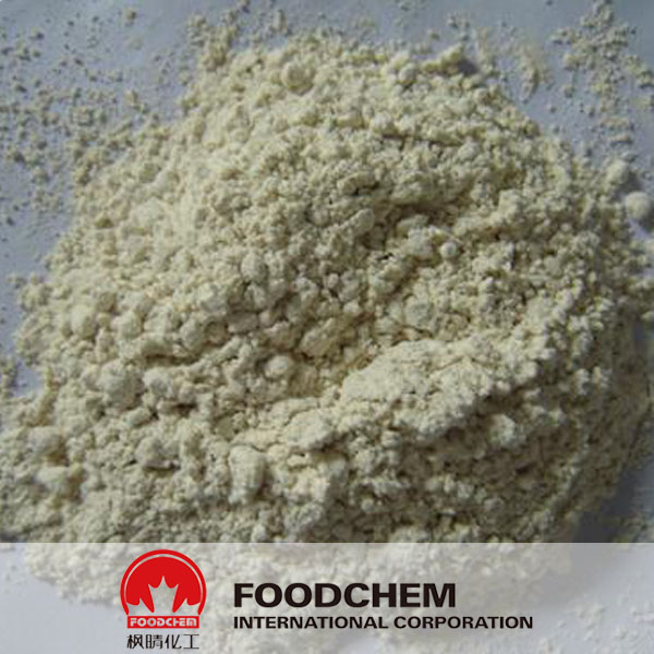 Horseradish Powder suppliers