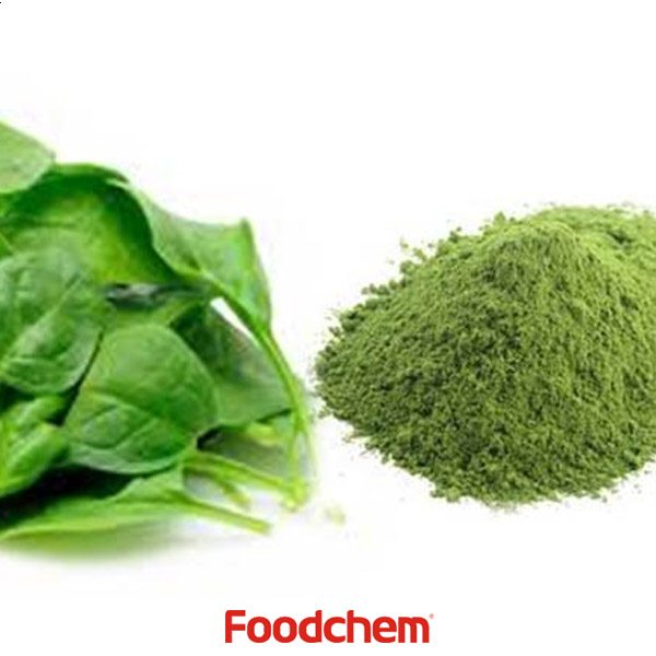 Spinach Powder suppliers