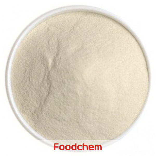 Agar food manufacturers and suppliers buy agar food price for Agar agar cuisine