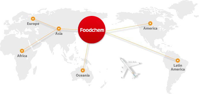 Foodchem map